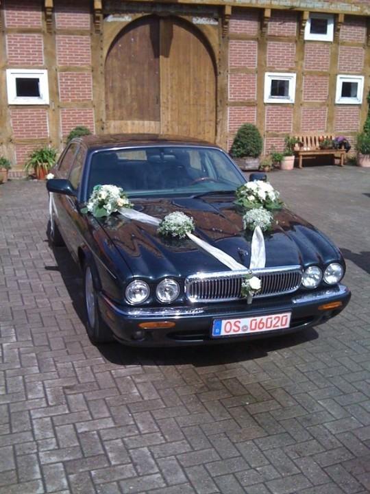 Jaguar XJ 8, Oldtimer Hochzeit, Brautwagen